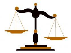 Административно правовой статус гражданина рф — Имигрант